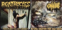 AGATHOCLES / CANNIBE -CD- Reduced To An Object / Natural Disaster From Dead Bodies