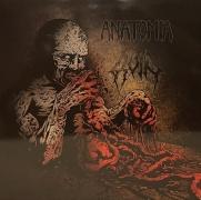 ANATOMIA / RUIN - split 12''LP