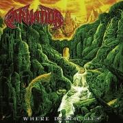 CARNATION - 12'' LP - Where Death Lies