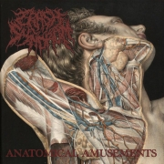 CRASH SYNDROM - MCD - Anatomical Amusements
