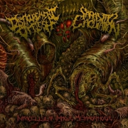 DISFIGUREMENT OF FLESH / PARASITIC EJACULATION - split EP CD -