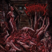 DYSMORFECTOMY - CD - Rapist Of Flesh