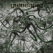 GUINEAPIG - Gatefold 12'' LP - Bacteria (silver vinyl, limited 100)