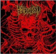 HATEFILLED - CD - A Manual Of Heinous Ways In Disembowelment