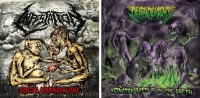 Bundle: DEBRIDEMENT CD + INFESTATION CD
