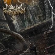MOLECULAR FRAGMENTATION - CD - Recurrence of Blasphemous Maelstrom
