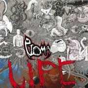 PTOMA - CDr - Life