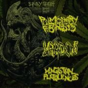 PULMONARY FIBROSIS / MAGISTRAL FLATULENCES / L.A.R.D.O.N - 3 way split CD -