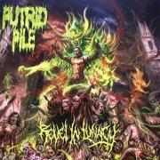 PUTRID PILE - 12'' LP - Revel In Lunacy