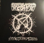 SEVEN MINUTES OF NAUSEA / DEFLOWERED CUNT - split 12'' LP -
