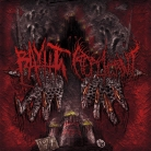 BAYHT LAHM / REPLICANT - split CD - Wellcome to New Jersey