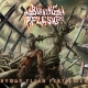 BURNING FLESH - Digipak CD - Human Flesh Fertilizer