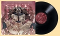 COCK AND BALL TORTURE - 12'' LP - Opus(sy)VI (Black Vinyl) (Vorbestellung 23.04.21)