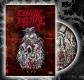 COYOTE BRUTAL FEST #6 - DVD - (w. BIG END BOLT, ANAL GRIND, 7 H.TARGET, PIGHEAD, TU CARNE...)