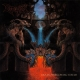 DISMEMBER - Gatefold 12'' 2LP -  Like An Everflowing Stream