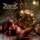 DISPLAY OF DECAY - Digipak CD - Art In Mutilation