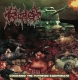 FAECES ERUPTION / PROCTALGIA - split CD -