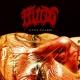 FLUIDS - CD - Little Village