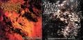 HUMAN ATROCITY / GRUESOME BODYPARTS AUTOPSY - split CD -