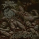 MENSTRUAL DISCONSUMED / GOREMONGER - split CD - Disgorging Putrid Chapter