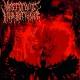 VANSTORBING INSOLOBRIDISHN - CD - Vanstorbing Insolobridishn